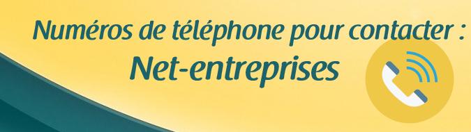 Telephone Net Entreprises